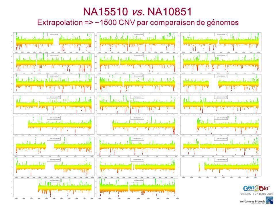 Extrapolation => ~1500 CNV par comparaison de génomes