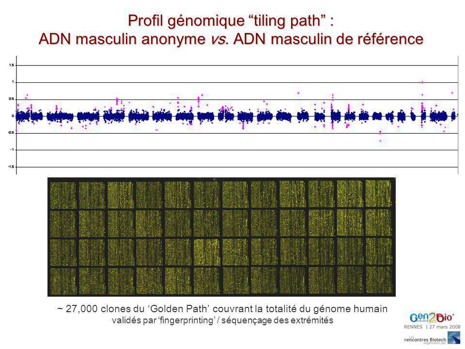 Profil génomique tiling path :