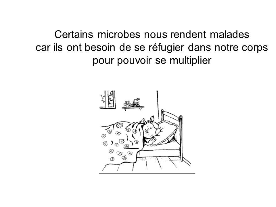 Certains microbes nous rendent malades car ils ont besoin de se réfugier dans notre corps pour pouvoir se multiplier