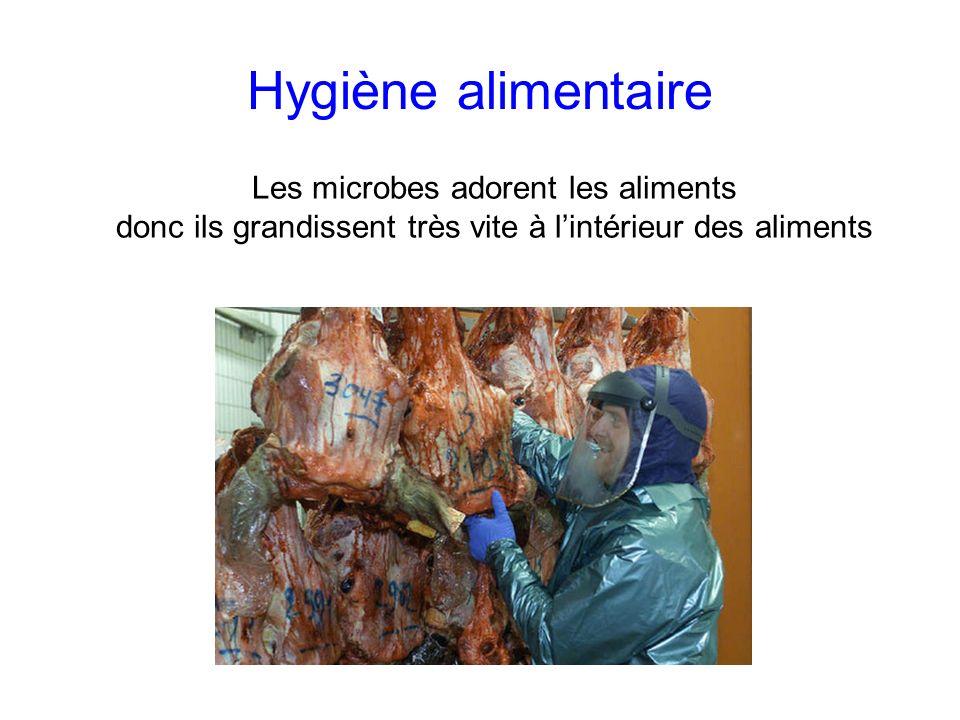 Hygiène alimentaire Les microbes adorent les aliments