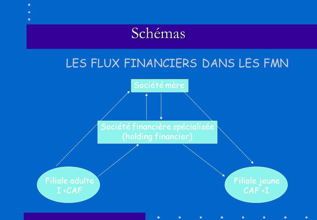 Société financière spécialisée