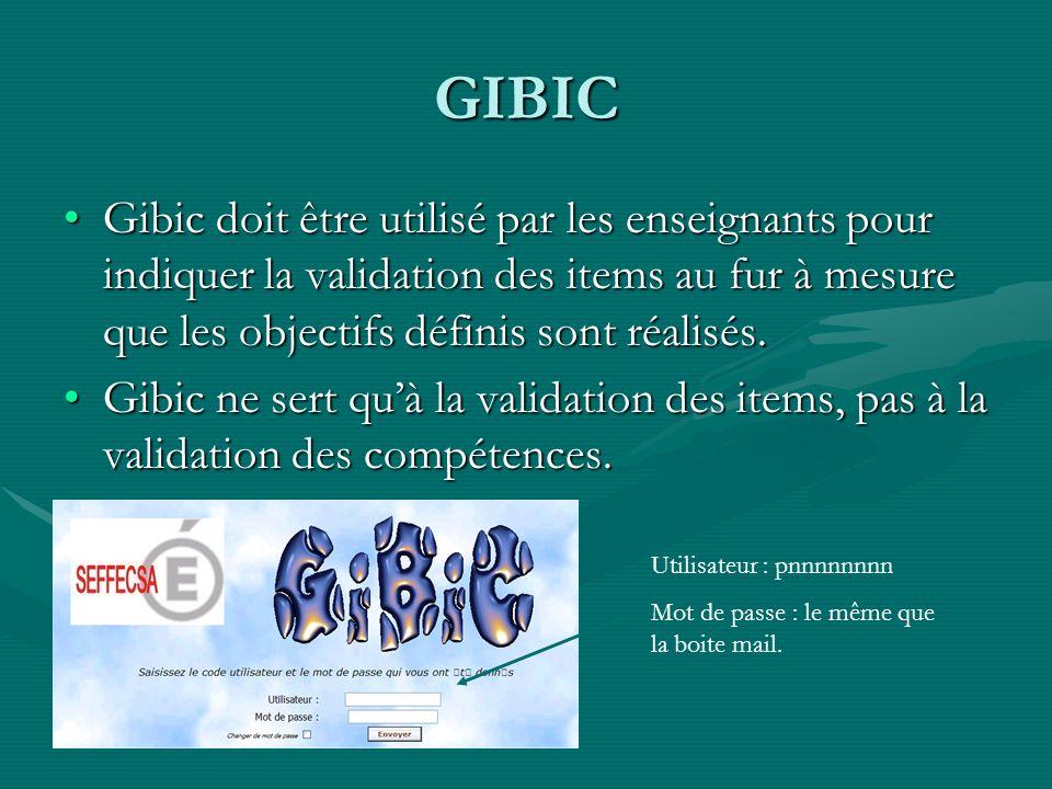 GIBIC Gibic doit être utilisé par les enseignants pour indiquer la validation des items au fur à mesure que les objectifs définis sont réalisés.