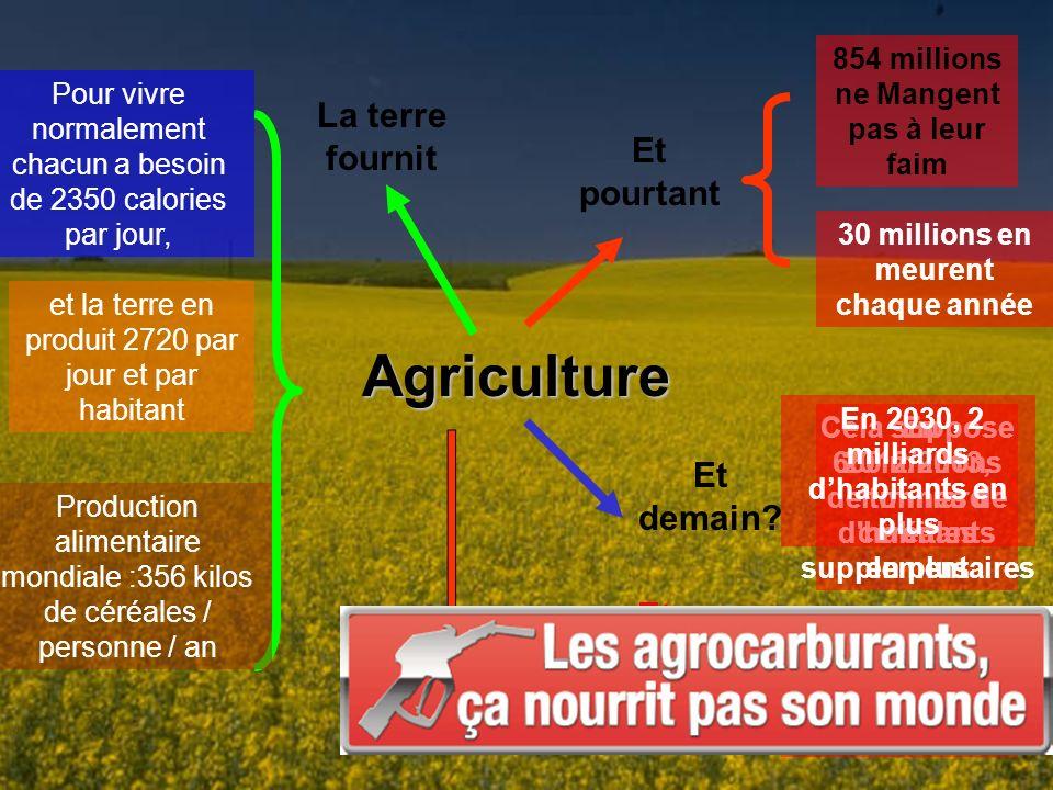Agriculture La terre fournit Et pourtant Et demain