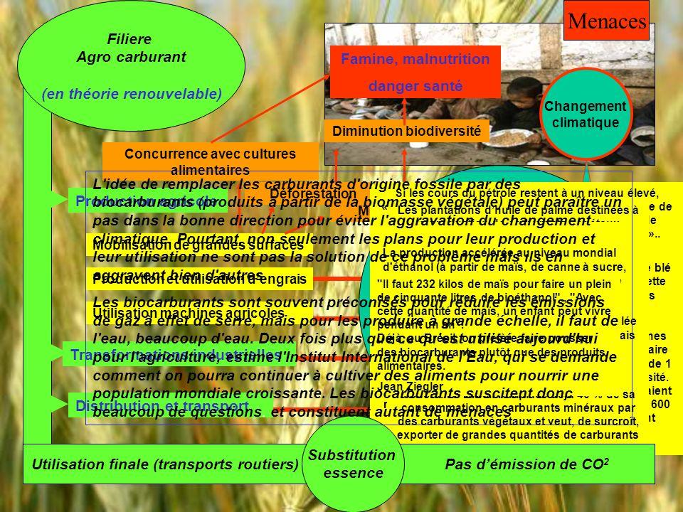 Menaces Filiere Agro carburant (en théorie renouvelable)