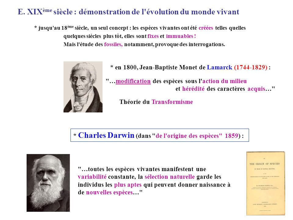E. XIXème siècle : démonstration de l évolution du monde vivant