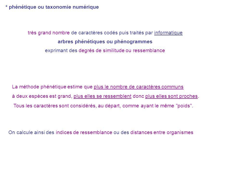 arbres phénétiques ou phénogrammes