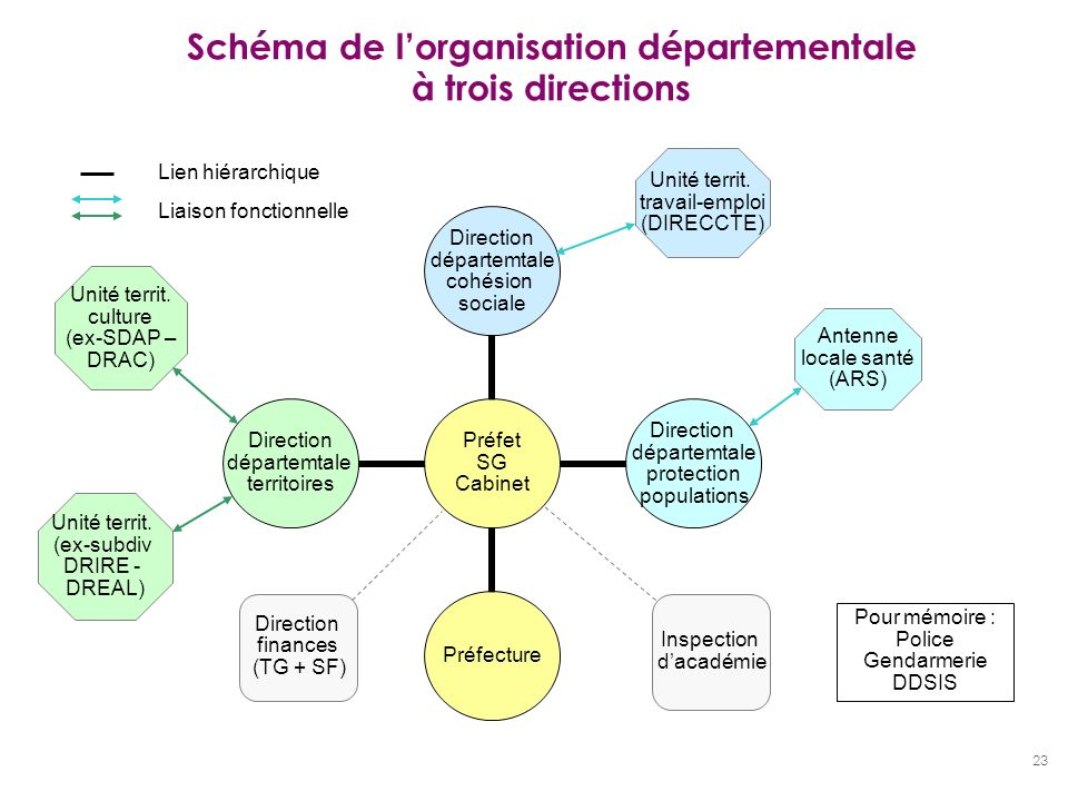 Schéma de l'organisation départementale à trois directions