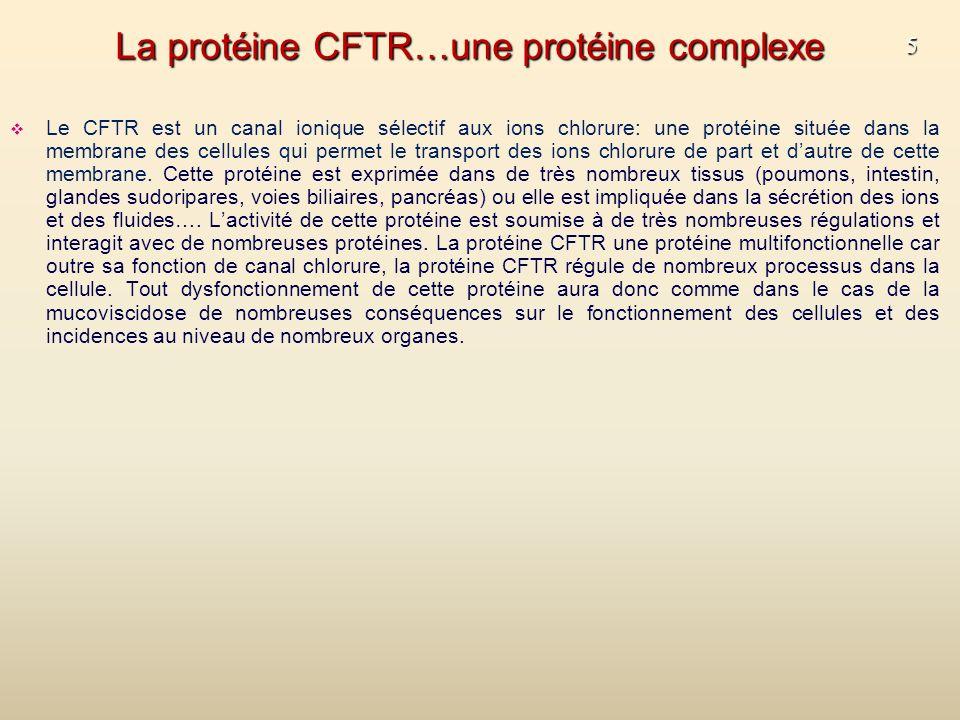 La protéine CFTR…une protéine complexe