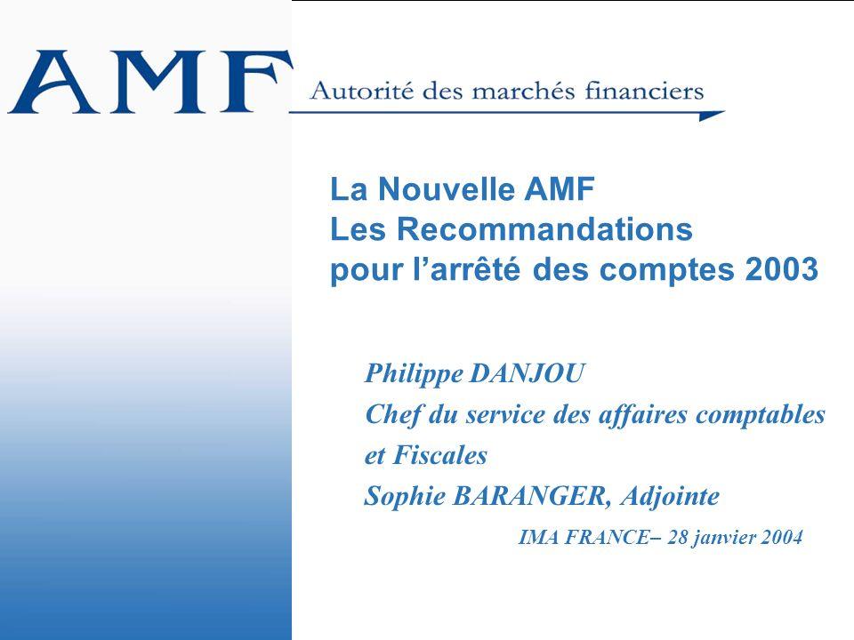 La Nouvelle AMF Les Recommandations pour l'arrêté des comptes 2003