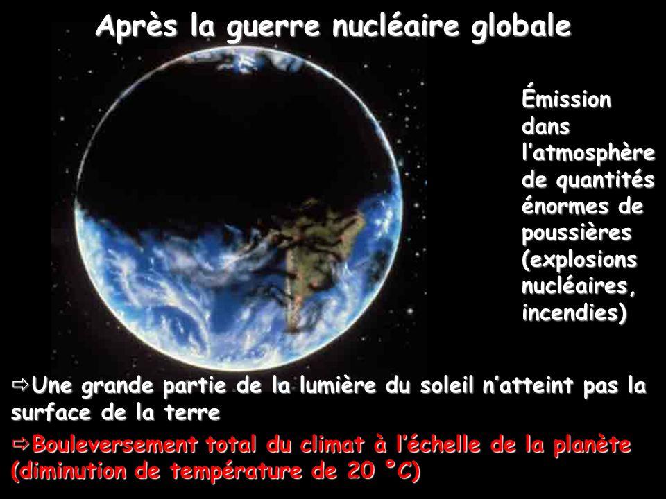 Après la guerre nucléaire globale