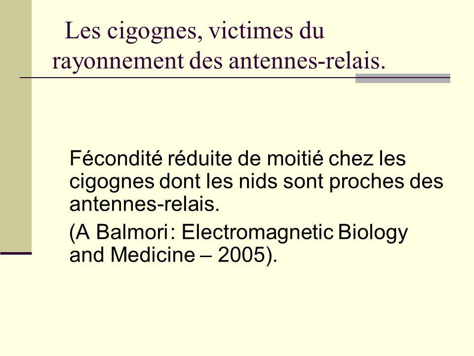 Les cigognes, victimes du rayonnement des antennes-relais.