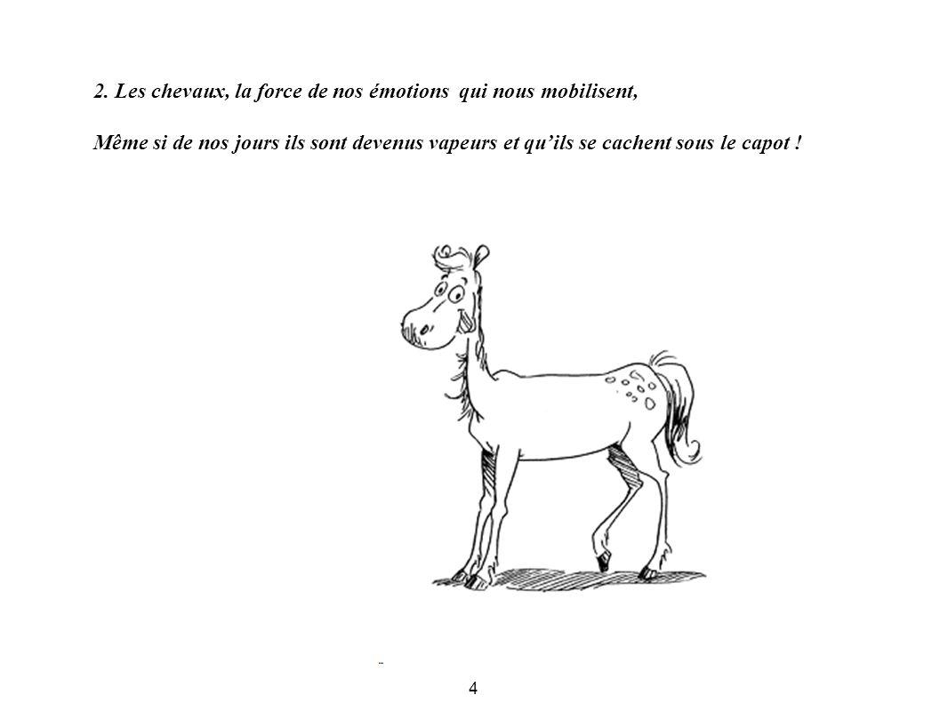 2. Les chevaux, la force de nos émotions qui nous mobilisent,
