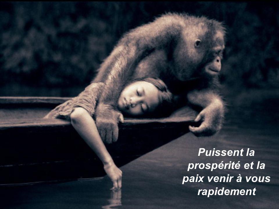 Puissent la prospérité et la paix venir à vous rapidement