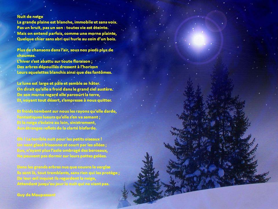 Nuit de neige La grande plaine est blanche, immobile et sans voix. Pas un bruit, pas un son : toutes vie est éteinte.