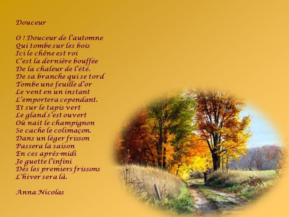 Douceur O ! Douceur de l'automne. Qui tombe sur les bois. Ici le chêne est roi. C'est la dernière bouffée.
