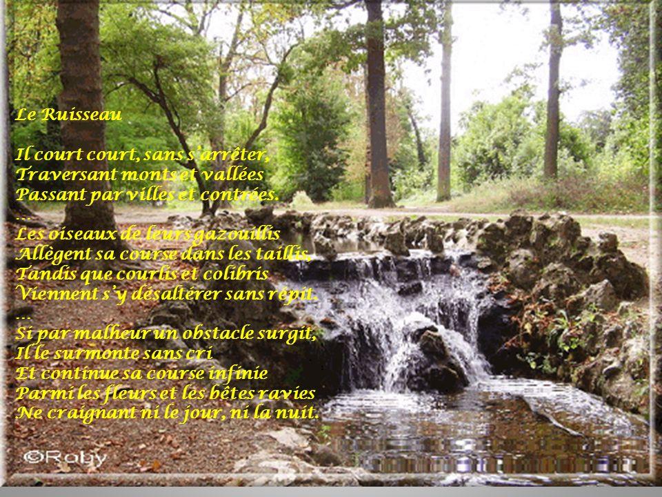 Le Ruisseau Il court court, sans s'arrêter, Traversant monts et vallées. Passant par villes et contrées.