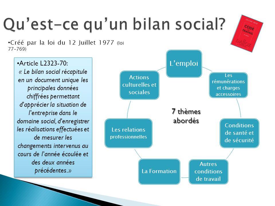 Qu'est-ce qu'un bilan social