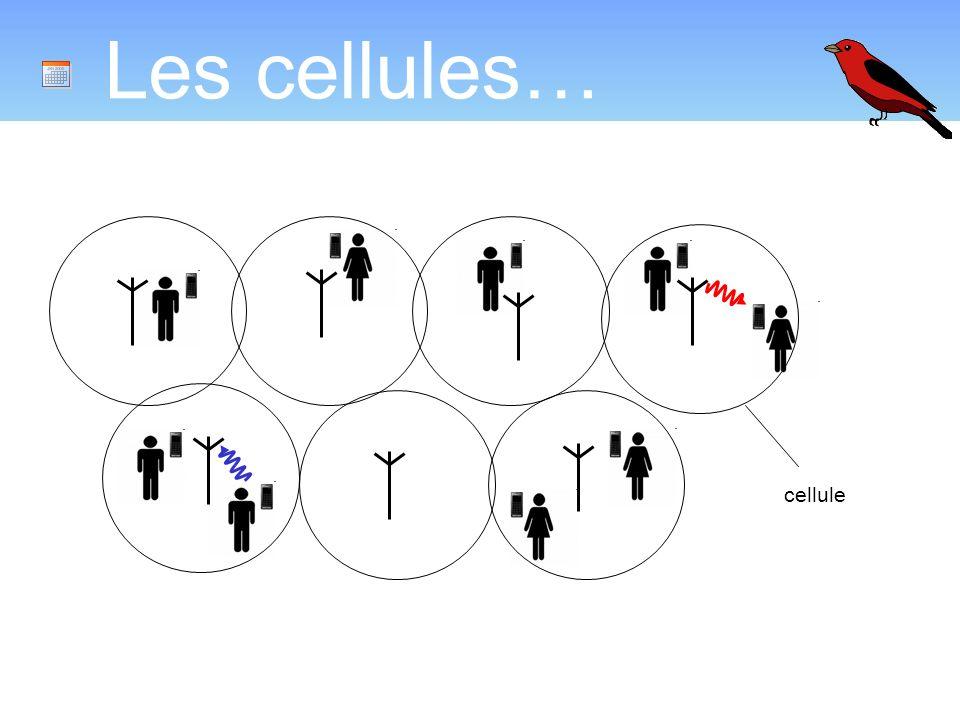 Les cellules… cellule Introduire le concept cellulaire.