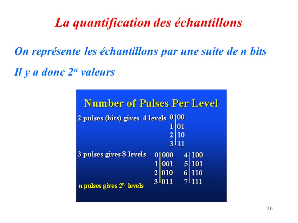 La quantification des échantillons