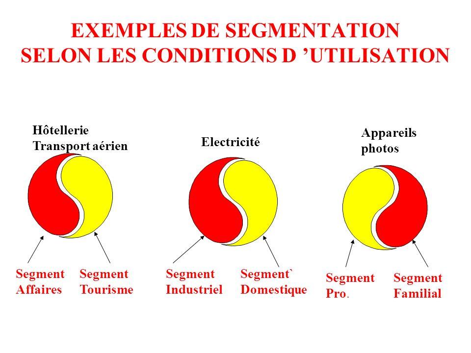 EXEMPLES DE SEGMENTATION SELON LES CONDITIONS D 'UTILISATION
