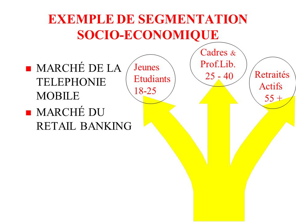 EXEMPLE DE SEGMENTATION SOCIO-ECONOMIQUE