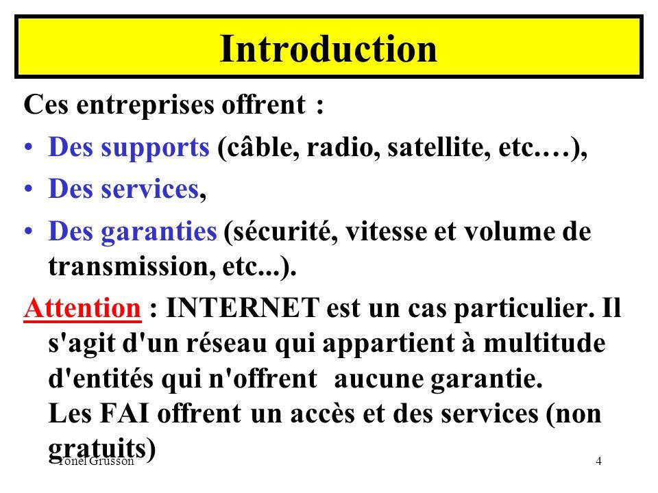 Introduction Ces entreprises offrent :