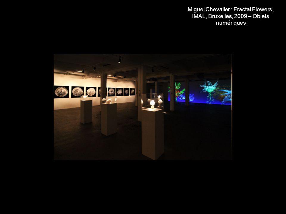 Miguel Chevalier : Fractal Flowers, IMAL, Bruxelles, 2009 – Objets numériques