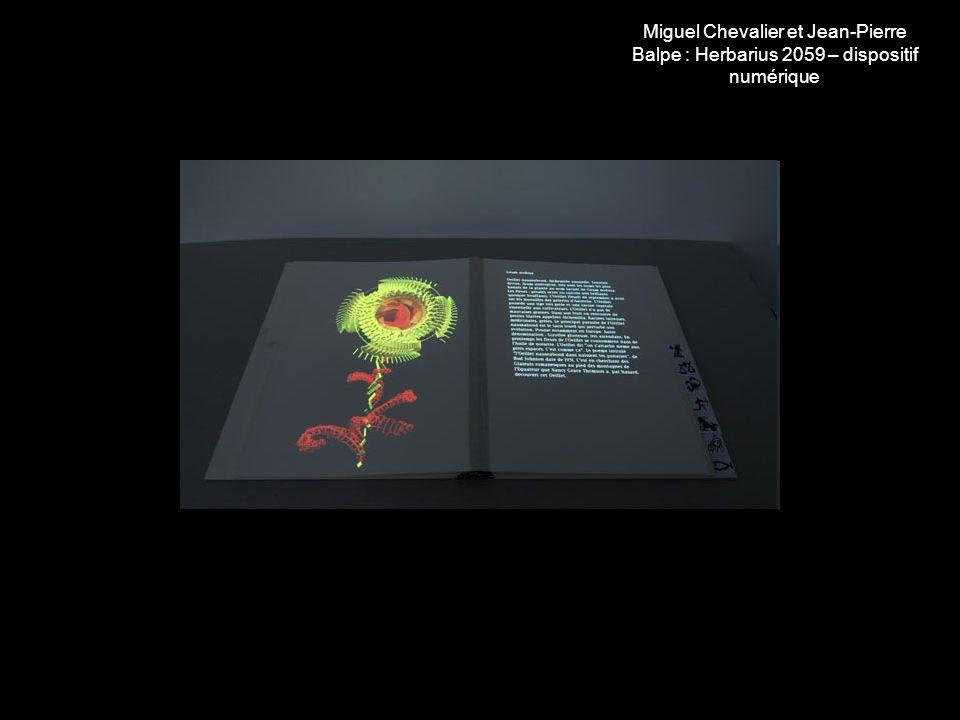 Miguel Chevalier et Jean-Pierre Balpe : Herbarius 2059 – dispositif numérique