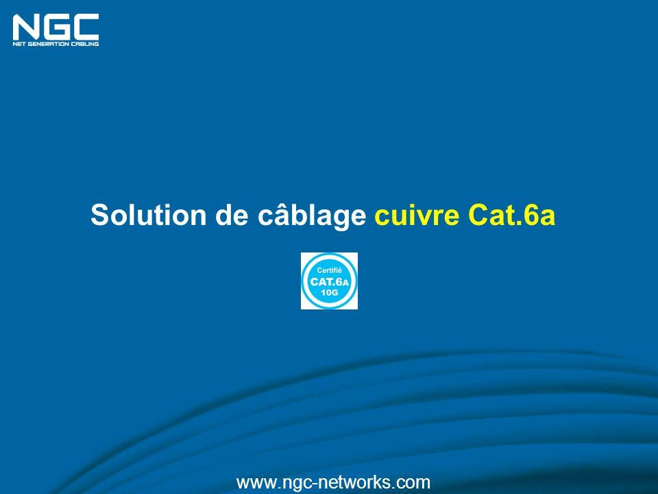 Solution de câblage cuivre Cat.6a
