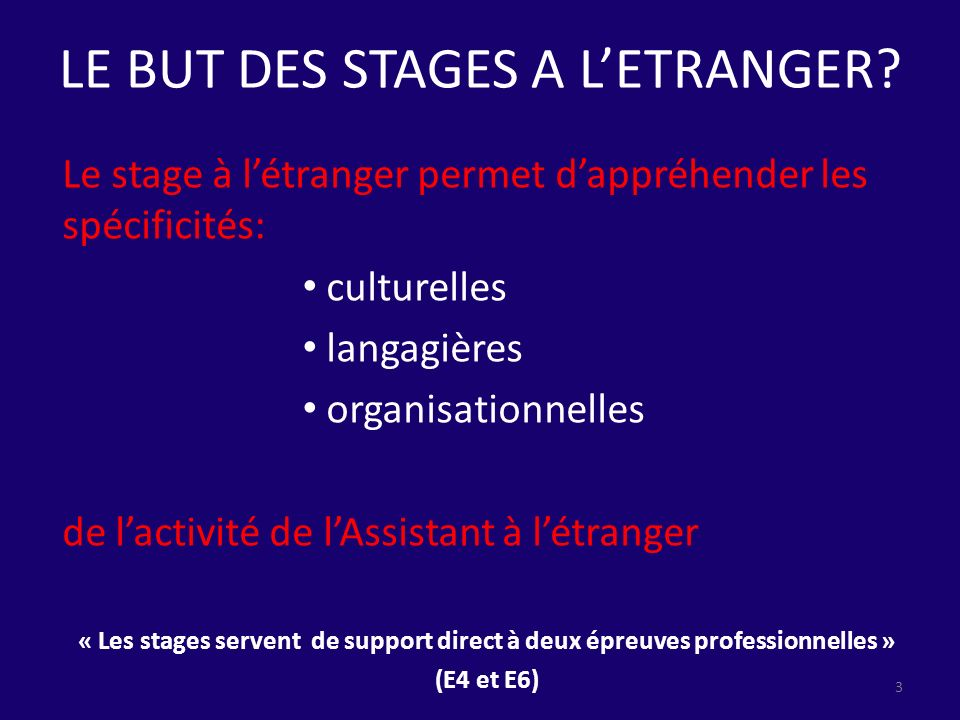LE BUT DES STAGES A L'ETRANGER