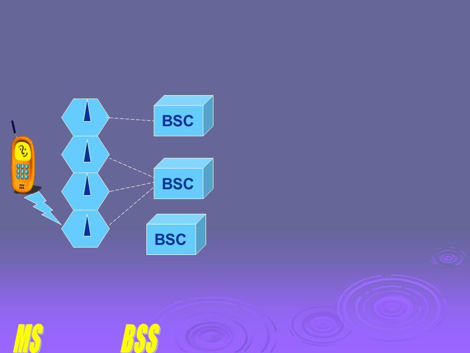 BSC BSC BSC MS BSS