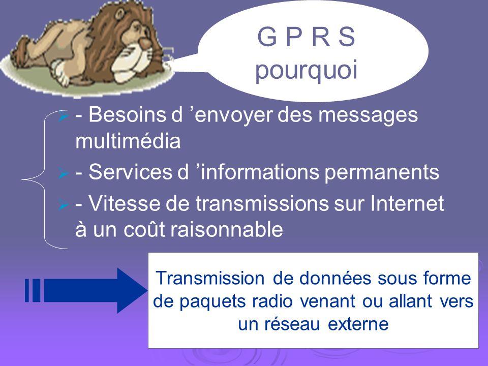 G P R S pourquoi - Besoins d 'envoyer des messages multimédia