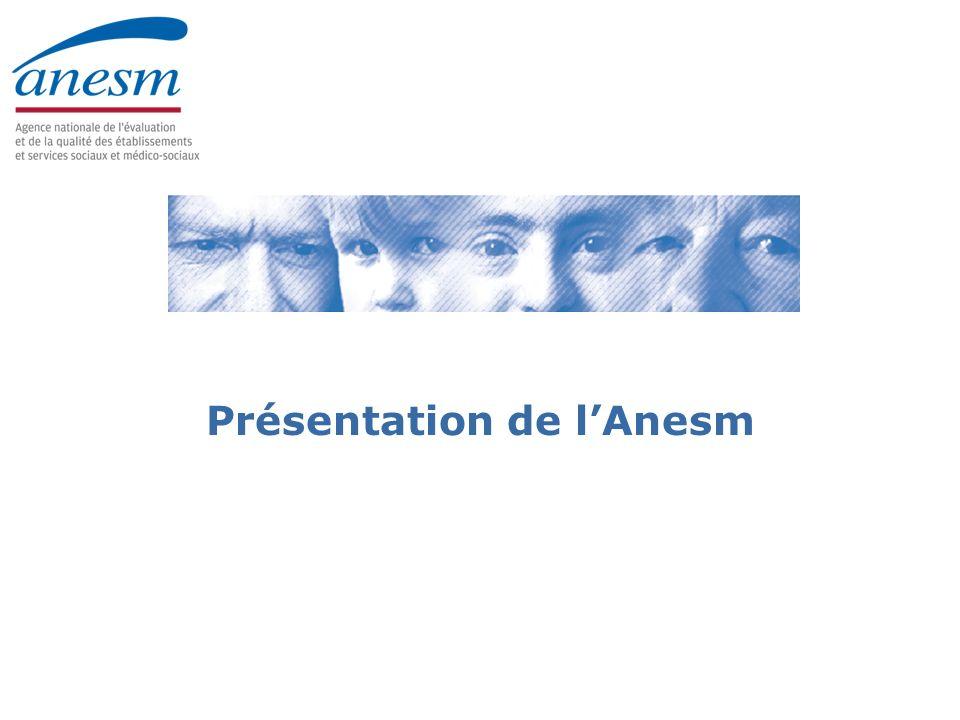 Présentation de l'Anesm