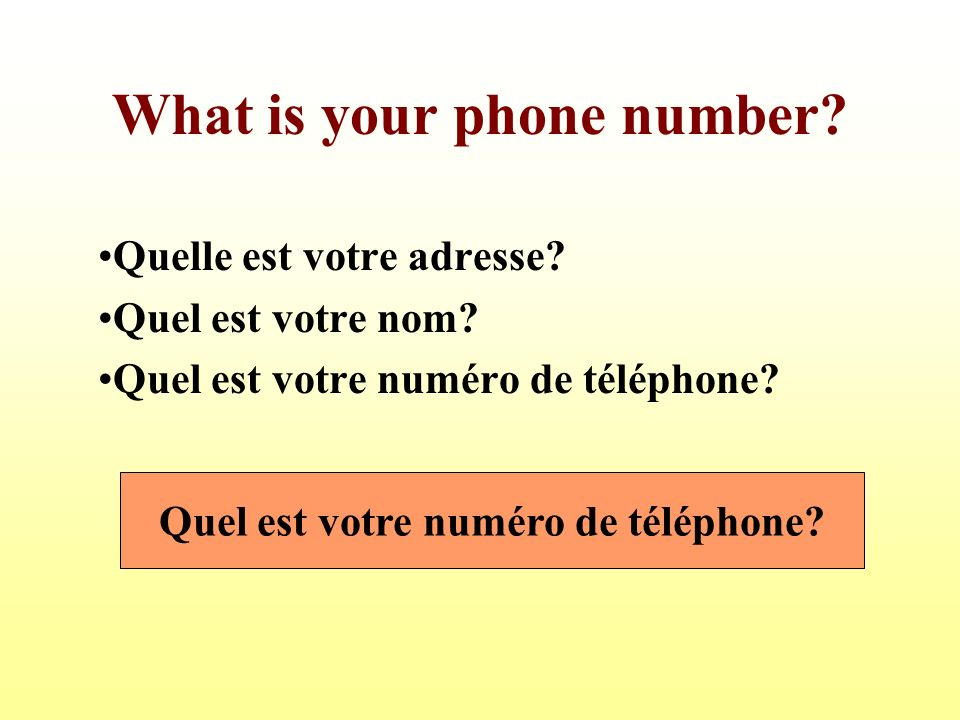 What is your phone number