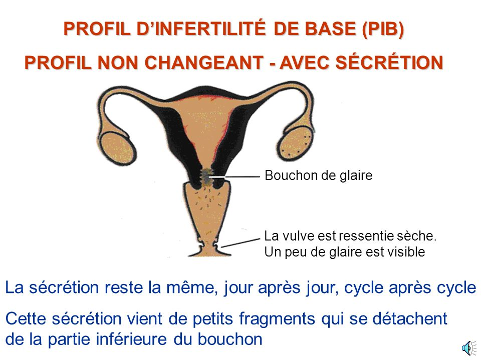 PROFIL D'INFERTILITÉ DE BASE (PIB)