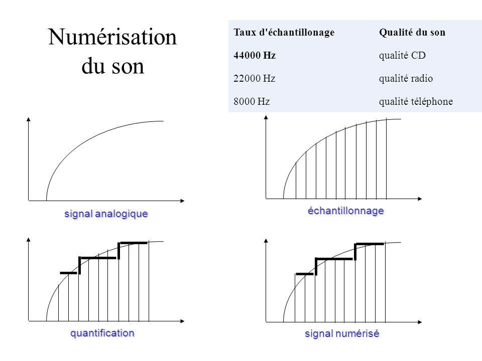 Numérisation du son Taux d échantillonage Qualité du son 44000 Hz