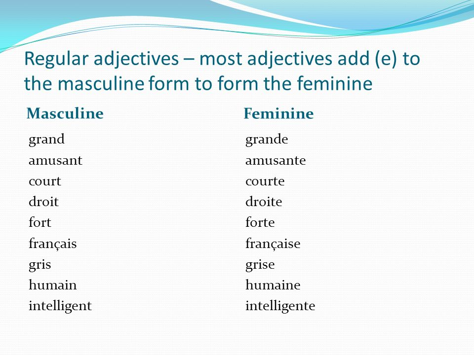 Regular adjectives – most adjectives add (e) to the masculine form to form the feminine