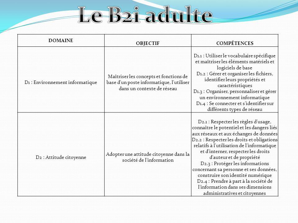 Le B2i adulte DOMAINE OBJECTIF COMPÉTENCES