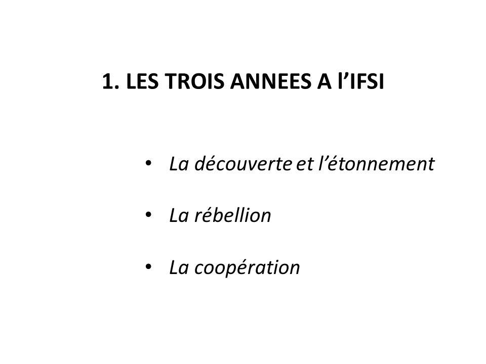 1. LES TROIS ANNEES A l'IFSI