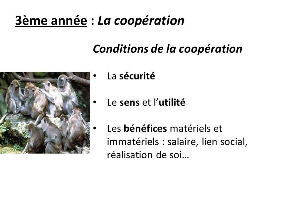 3ème année : La coopération