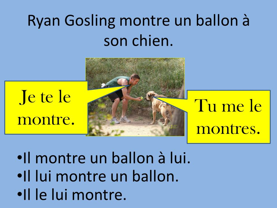 Ryan Gosling montre un ballon à son chien.