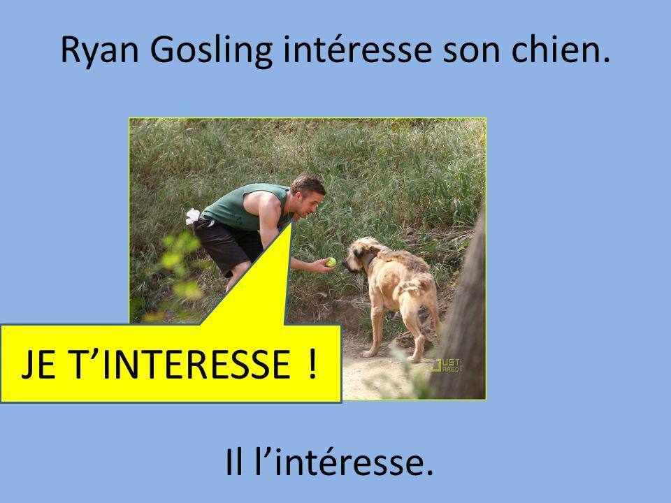 Ryan Gosling intéresse son chien.