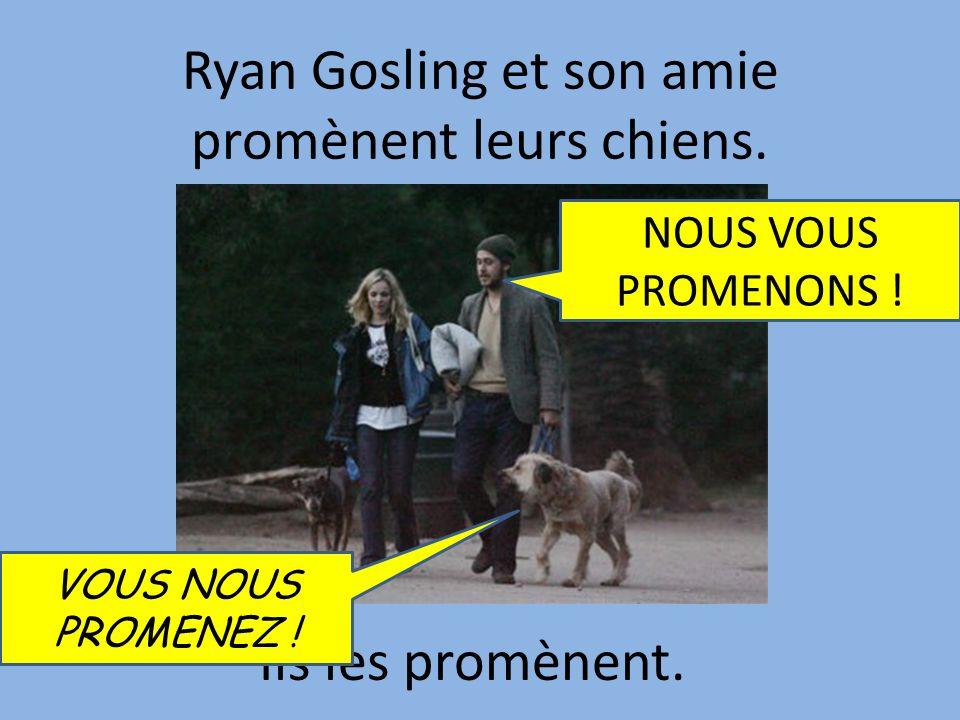 Ryan Gosling et son amie promènent leurs chiens.