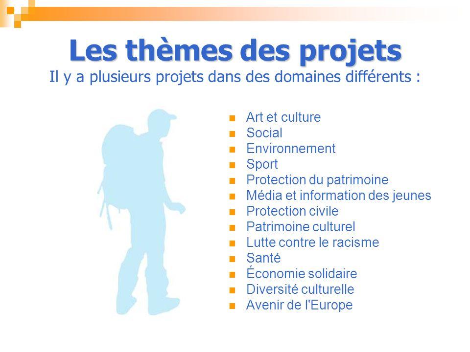 Les thèmes des projets Il y a plusieurs projets dans des domaines différents :