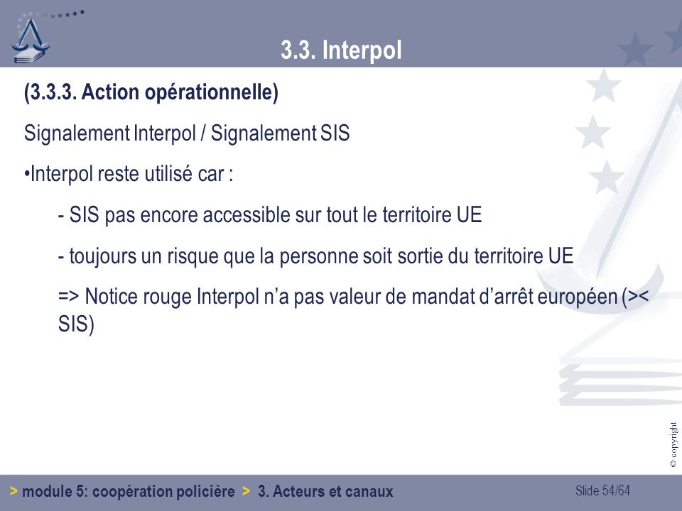 3.3. Interpol (3.3.3. Action opérationnelle)