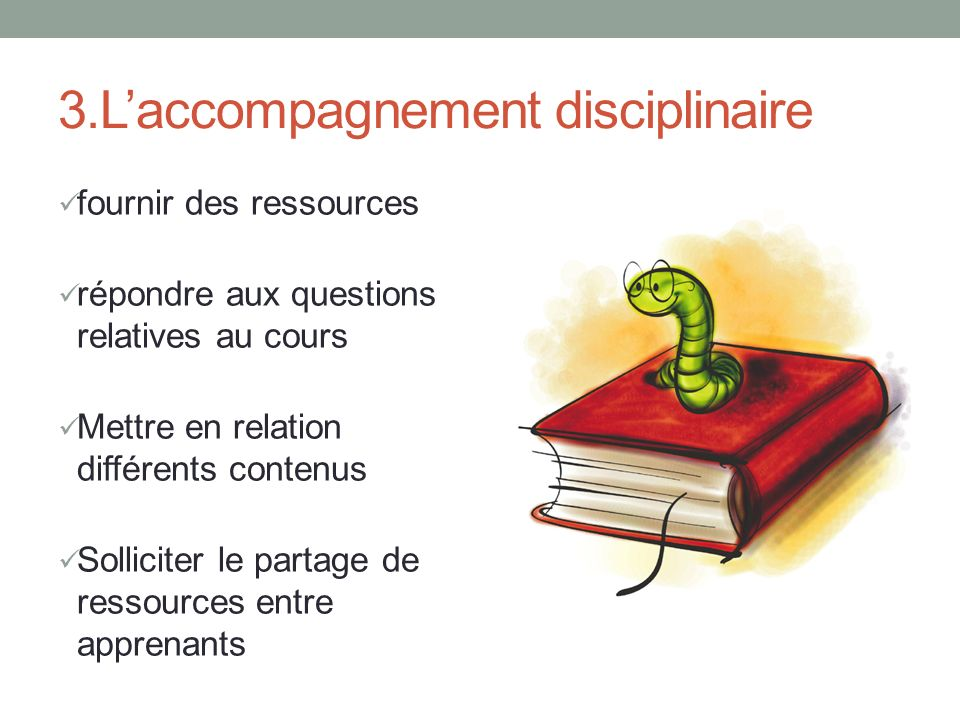 3.L'accompagnement disciplinaire