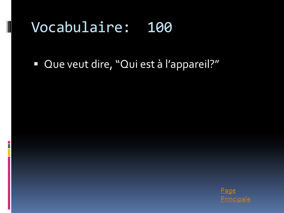 Vocabulaire: 100 Que veut dire, Qui est à l'appareil