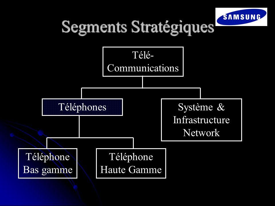Segments Stratégiques