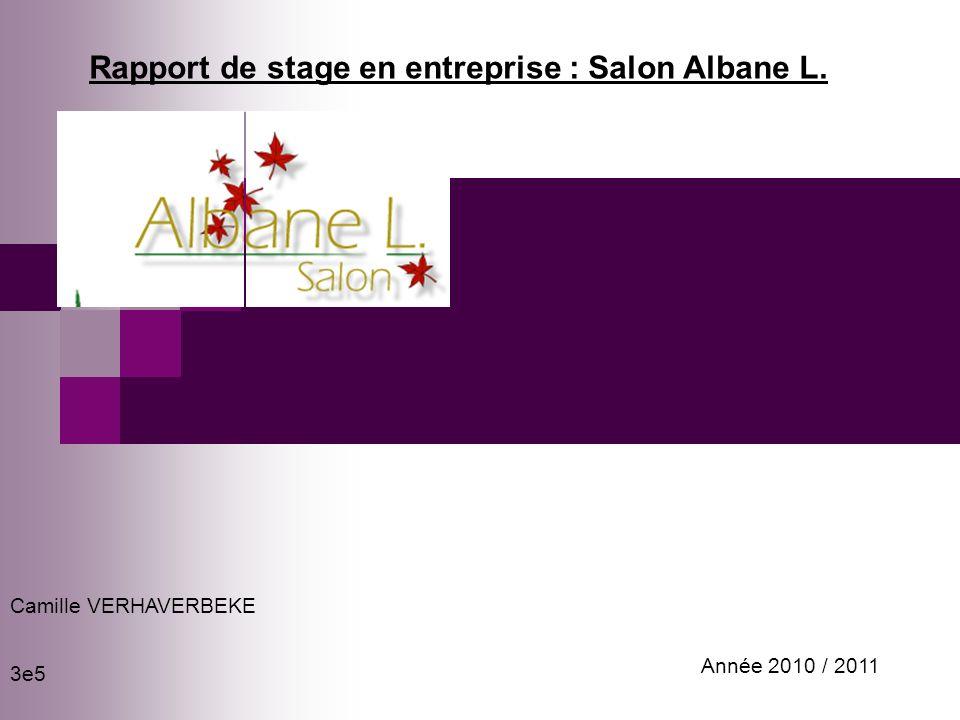 Rapport de stage en entreprise : Salon Albane L.
