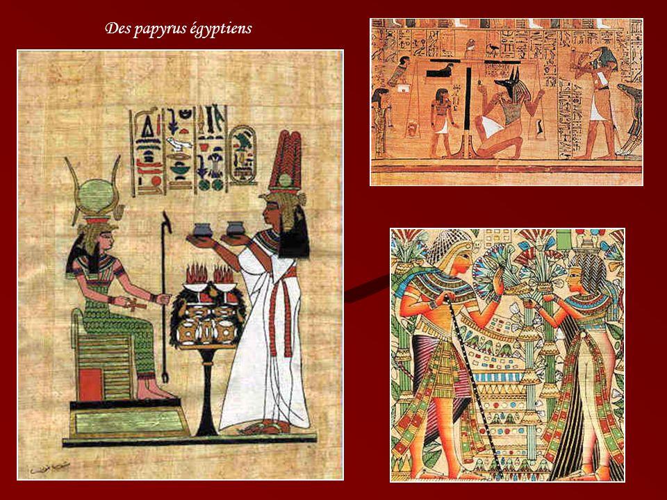Des papyrus égyptiens